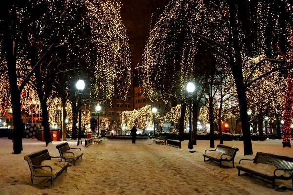 Holiday Lights in Rice Park, Saint Paul