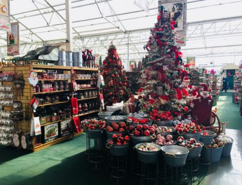 Unique Holiday Shopping in the Twin Cities & Inver Grove Heights