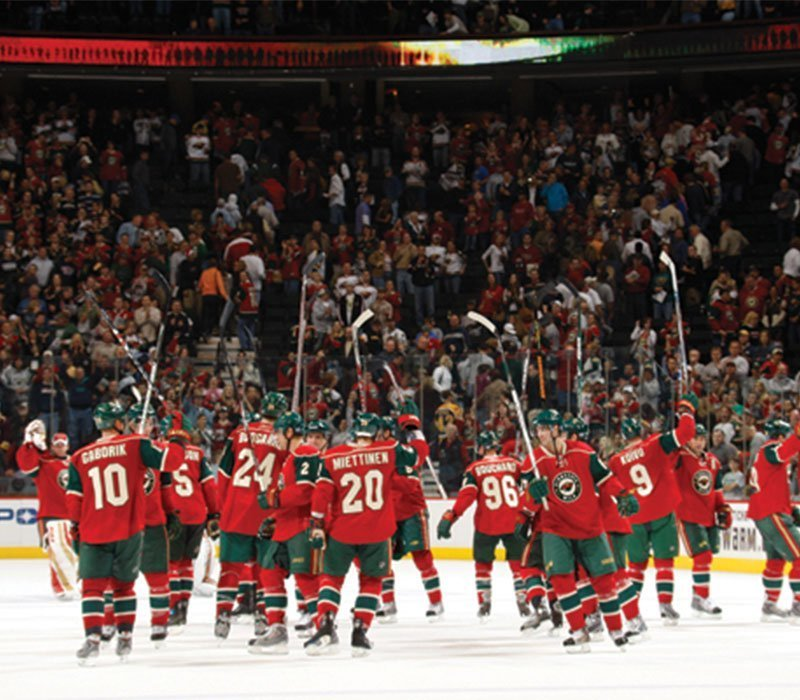 Minnesota Wild NHL Hockey