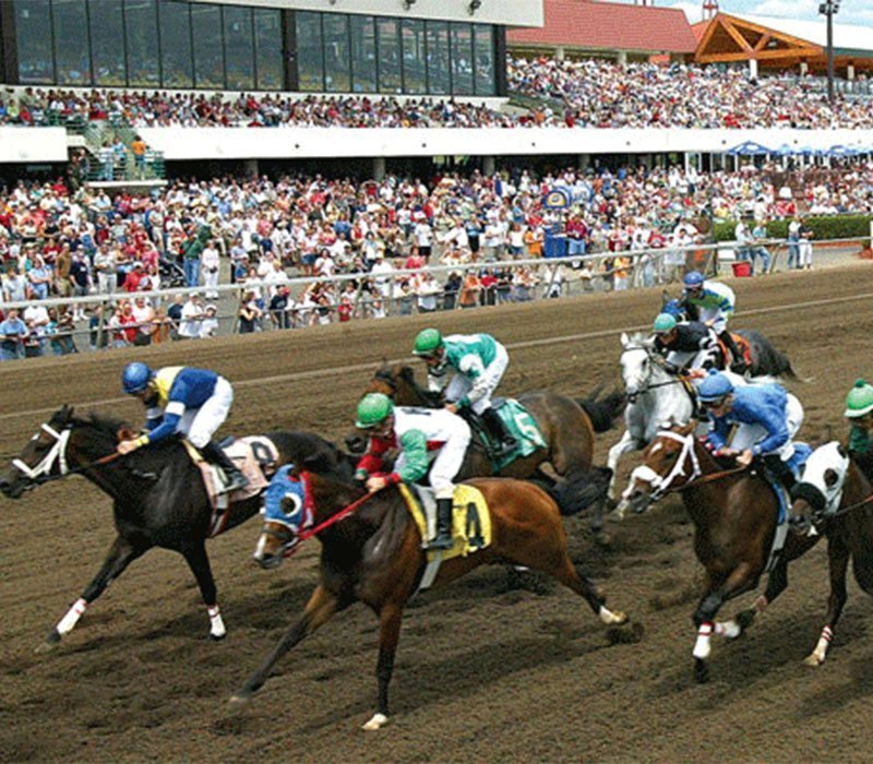 Canterbury Park & Card Room