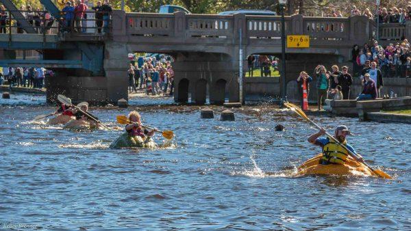 Stillwater Harvest Fest