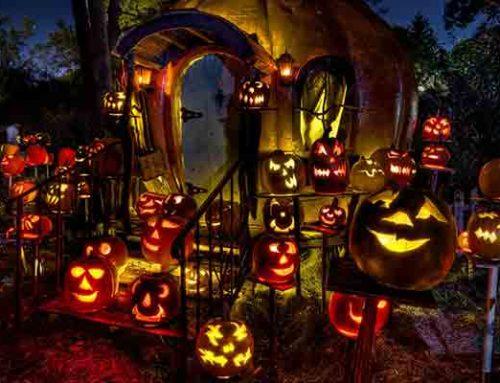 Spooktacular Family Halloween Fun